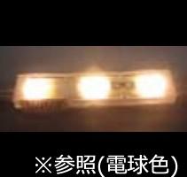 エコードスクエア100V-03電球色(50個単位)