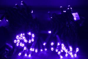 LEDストリングス ライトパープル