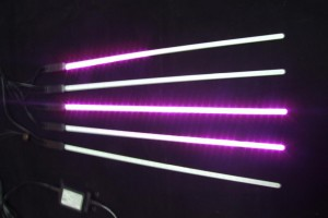 2Dスノードロップ500 ピンク