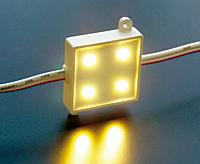 エコードスクエア100V-04電球色(50個単位)